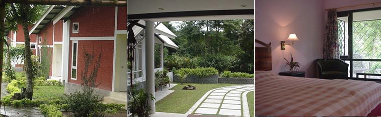 Bonhabi-Resort-Kaziranga
