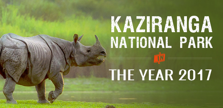 The Year of 2017 for Kaziranga National Park