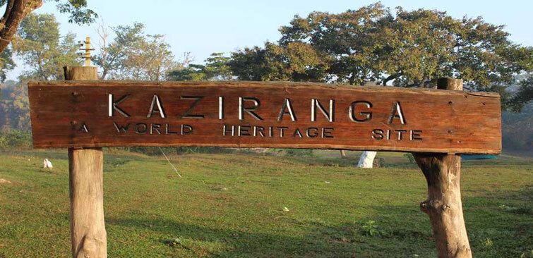 Kaziranga World Heritage Site