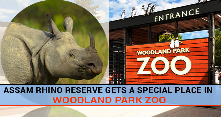Woodland Park Zoo all Set for One Horned Rhino
